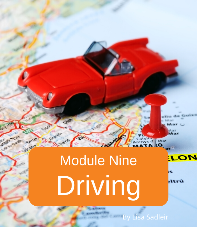 moving to spain online driving